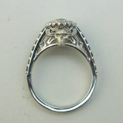 Skull Halo Engagement Rings