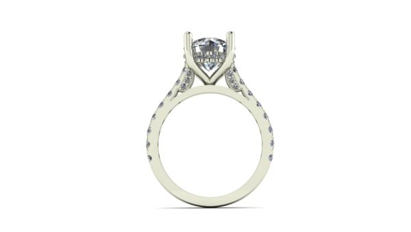 Cathedral Peekaboo Engagement Ring
